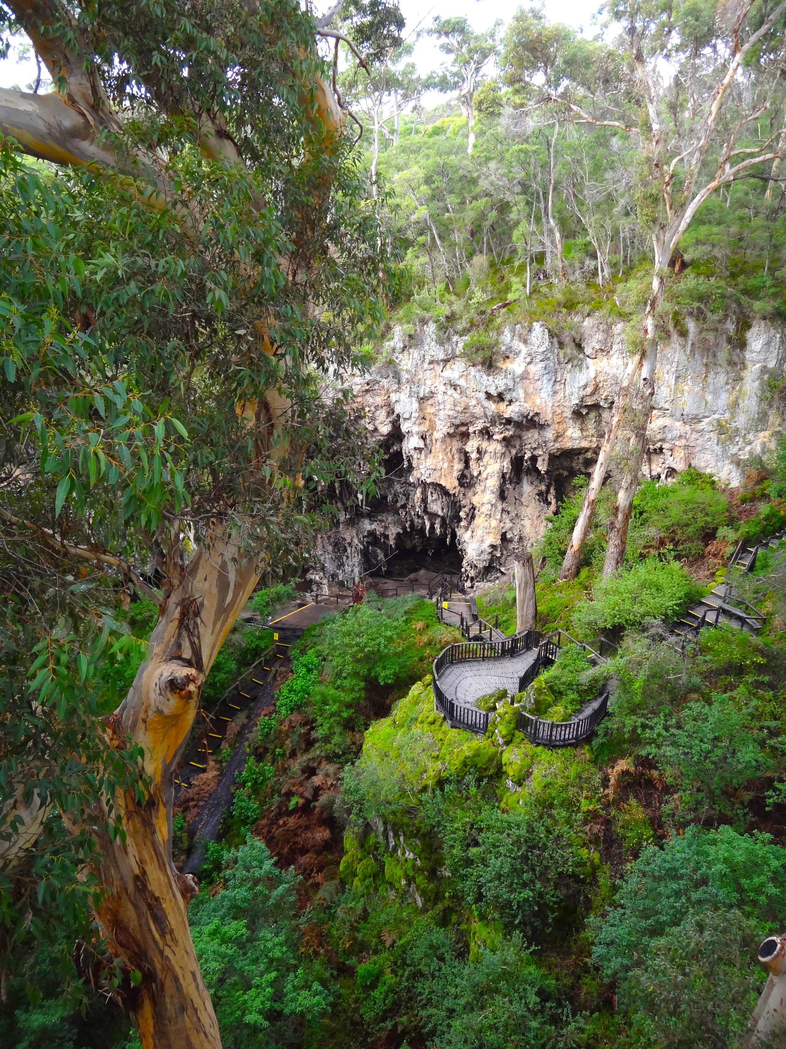 From dense forest with the impressive doline forming the entrance of Jewel Cave