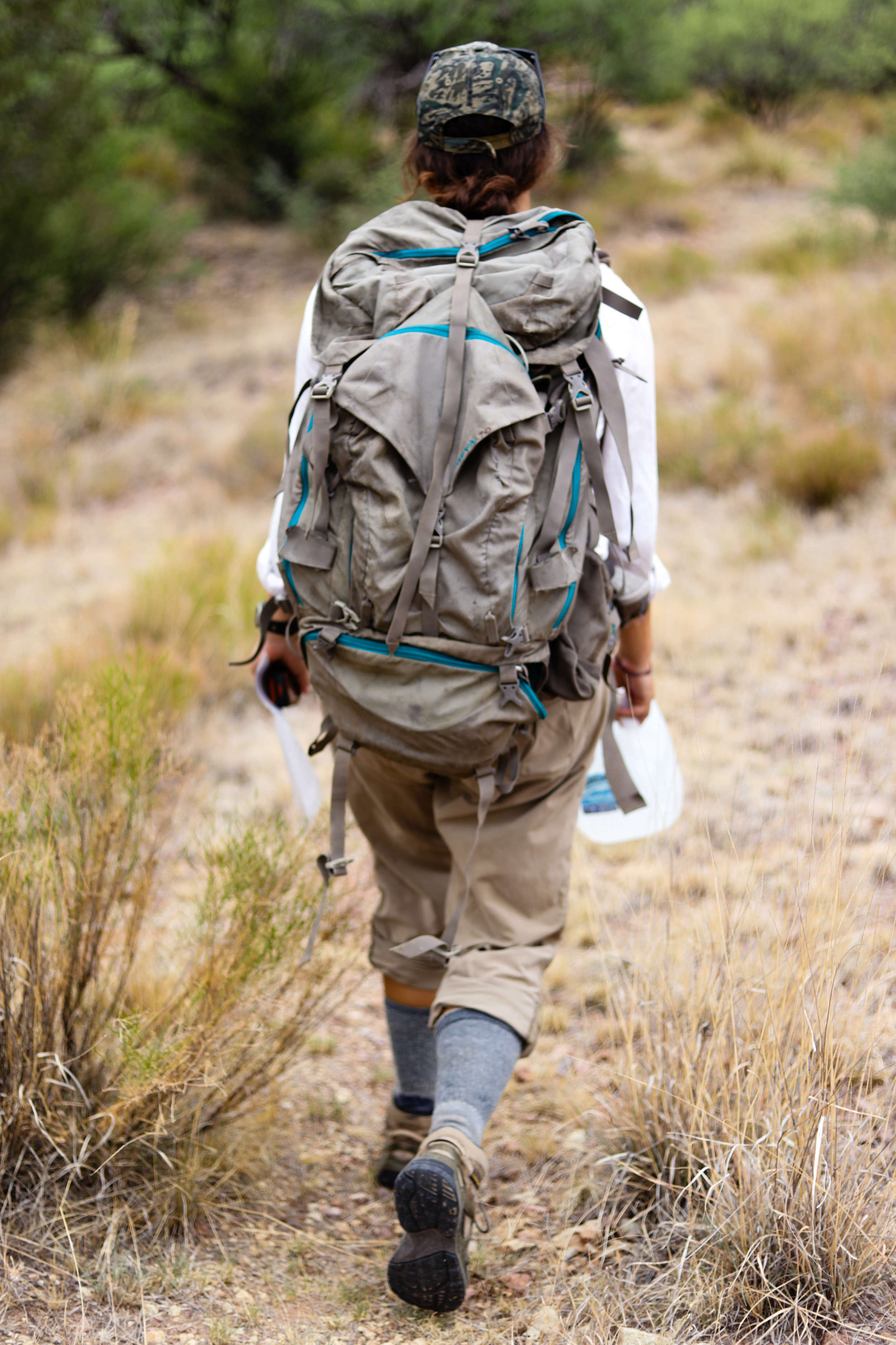 P, the leader of the hike, uses GPS to guide the way.