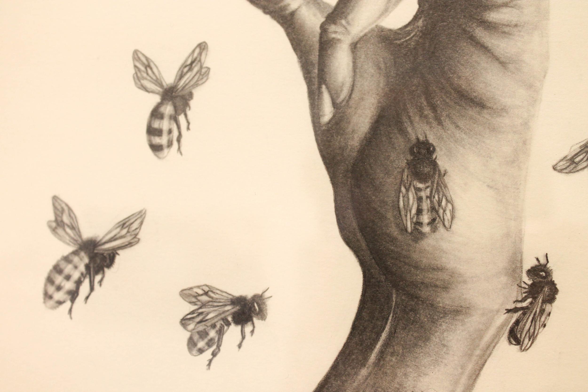 Susannah Kelly, 'Swarm' (detail)