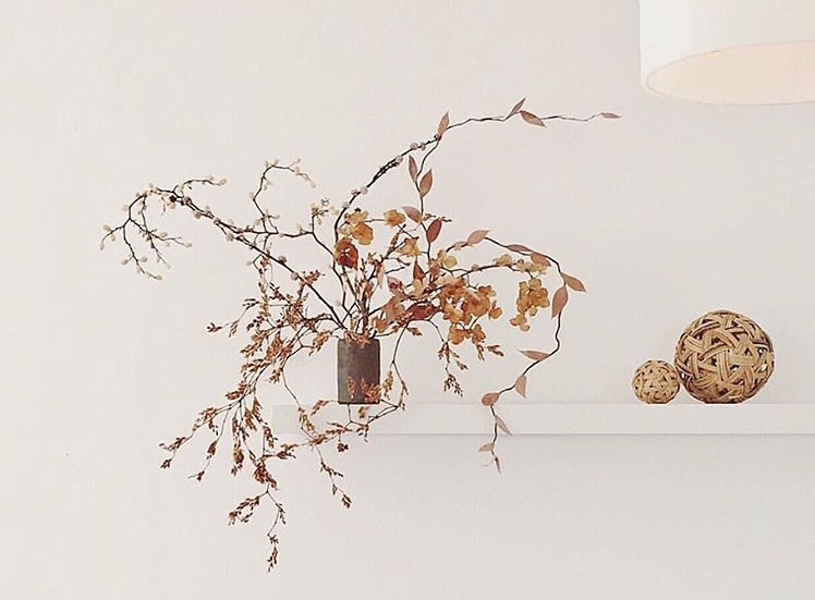Stacey Gillies Interiors  Auckland, North Shore