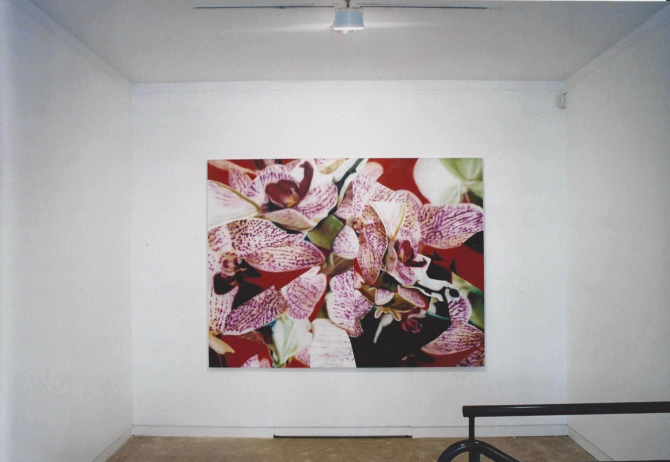 Etats de Peinture , Maison des Arts de Malakoff (FR)2003. Curator Philippe Piguet.
