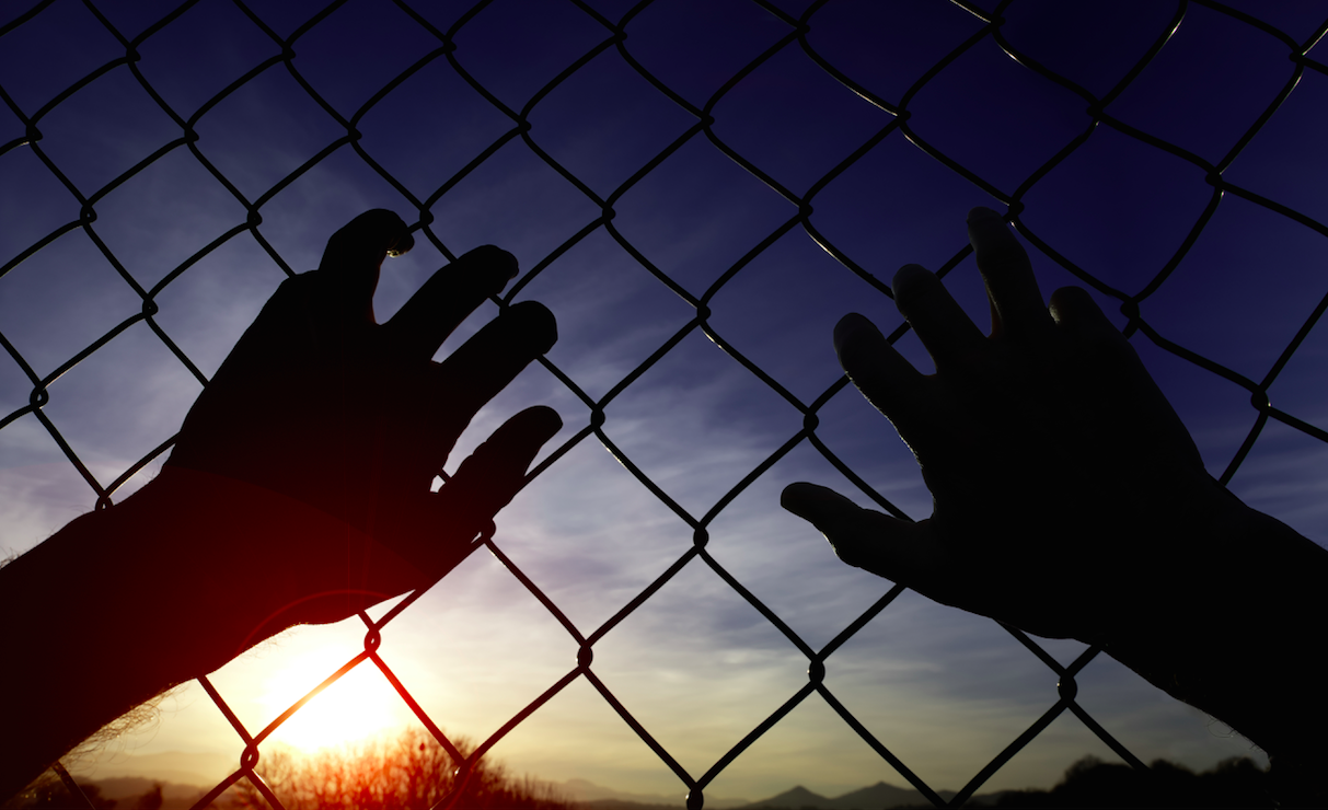 Hands on Fence.png