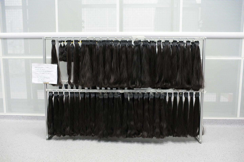 Human hair samples.