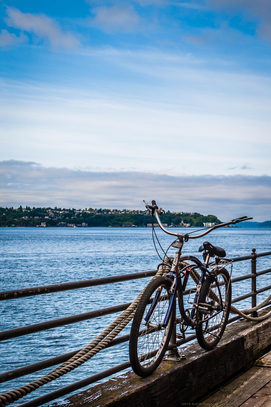 Seattle Along the Water  - 0002.jpg