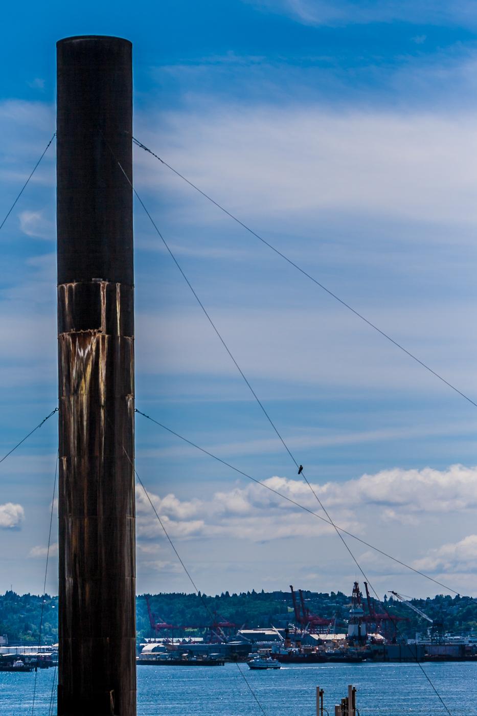 Seattle Along the Water  - 0039.jpg