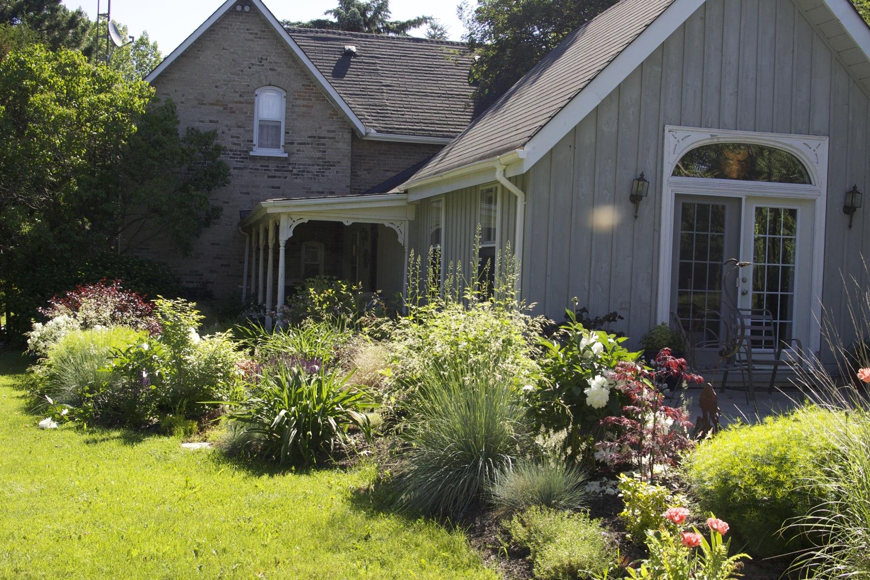 The garden outside my studio in Uxbridge, Ontario
