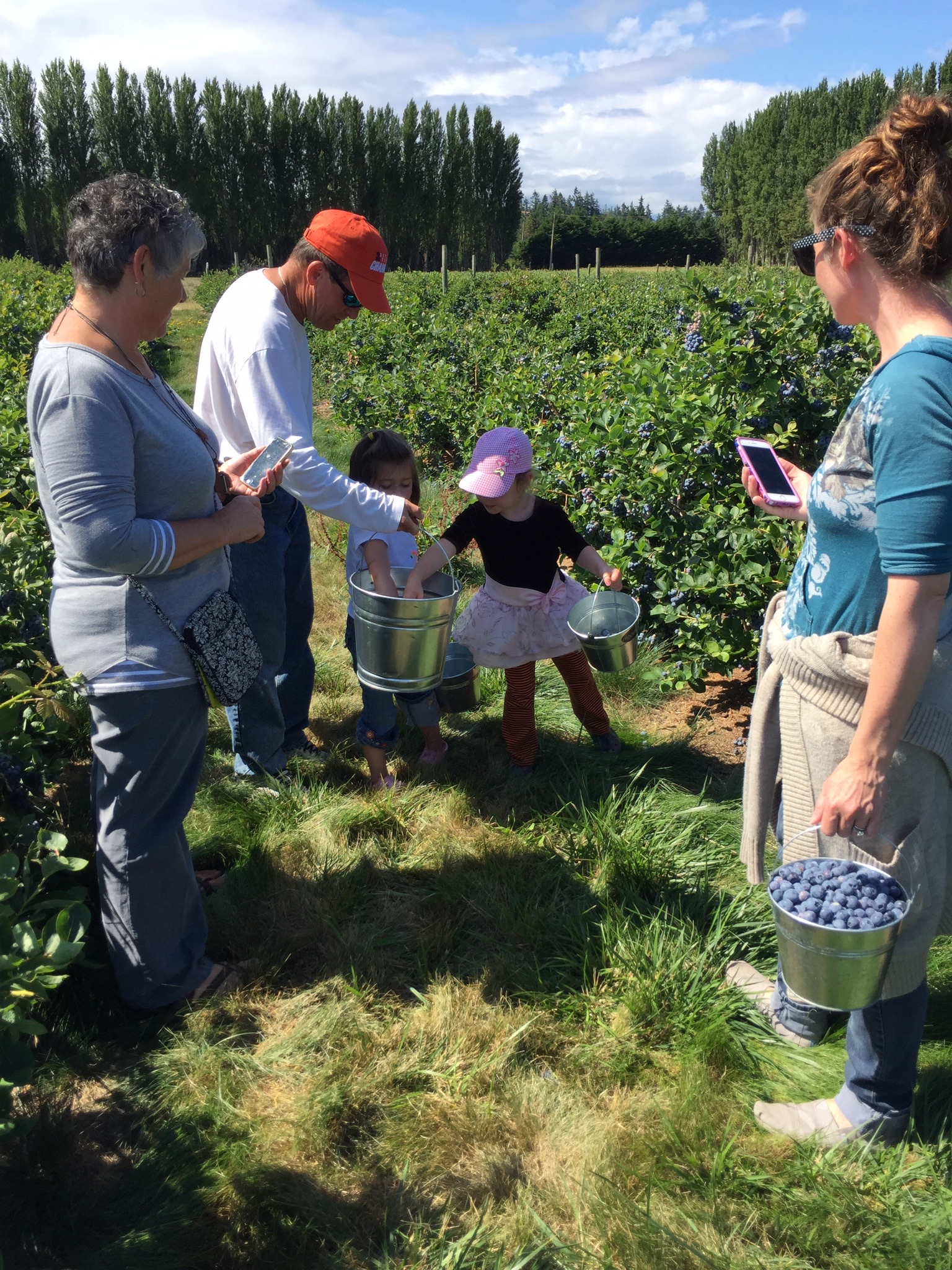 Berry Picking at Graymarsh 2.jpg