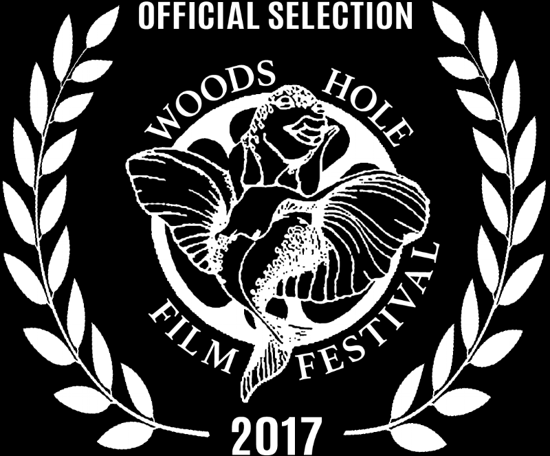 WHFF2017_OfficialSelection_White_transparent.png