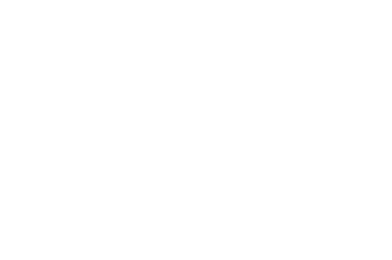 OFFICIAL SELECTION - Cinequest - 2017.png