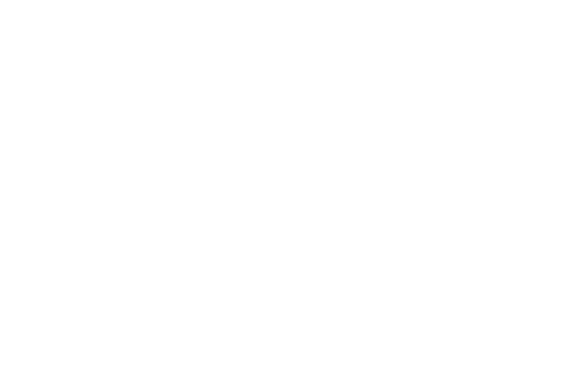 OFFICIAL SELECTION - Dances with Films - 2016.png