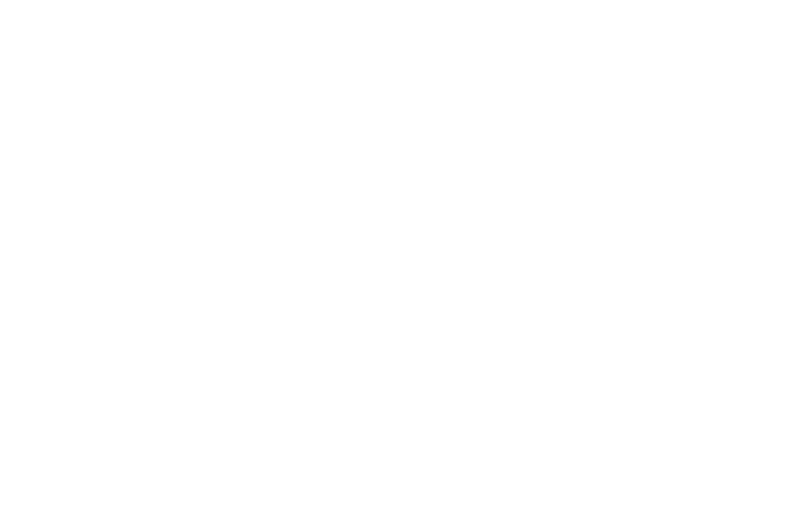 OFFICIAL SELECTION - MAC FILM FESTIVAL - 2017.png