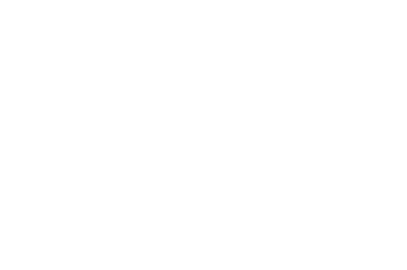 OFFICIAL SELECTION - Short Shorts Film Festival  Asia 2017 - 2017.png