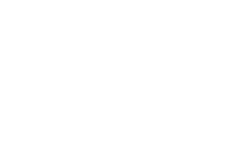 OFFICIAL SELECTION - Scare-A-Con Film Festival - 2017.png