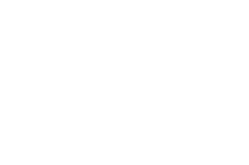 OFFICIAL SELECTION - Women in Horror Film Festival - 2017.png
