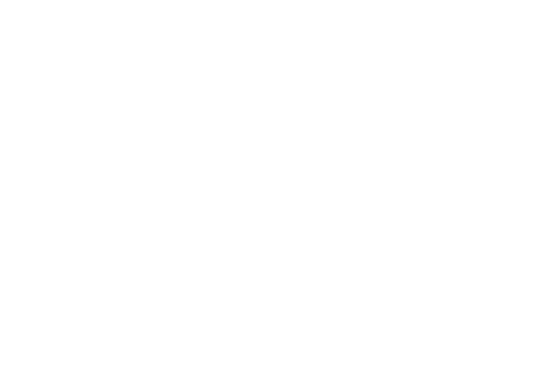 OFFICIAL SELECTION - Pittsburgh Shorts - 2017 (1).png