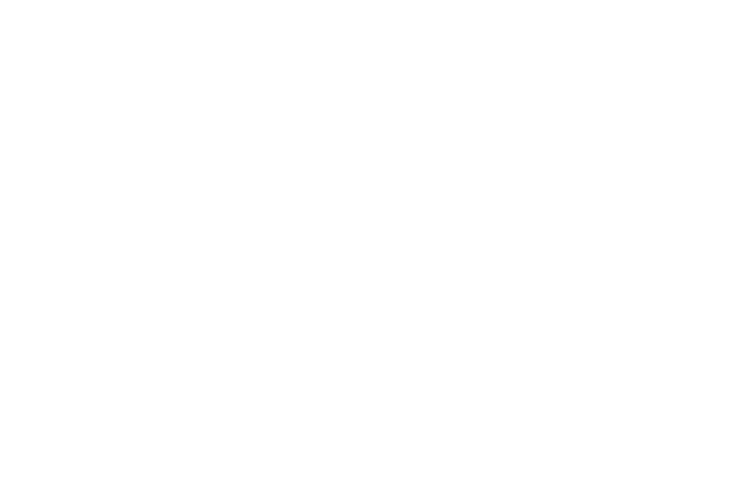 OFFICIAL SELECTION - American Horror Film Festival - 2017.png