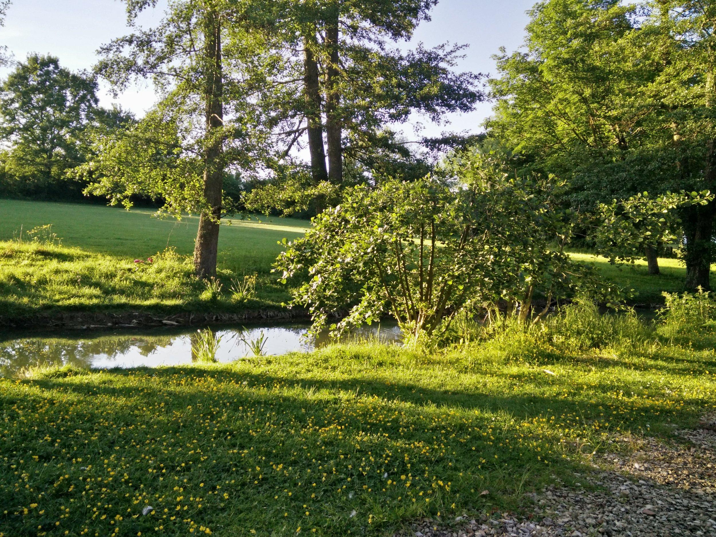 Copy of La Barbotière - le jardin