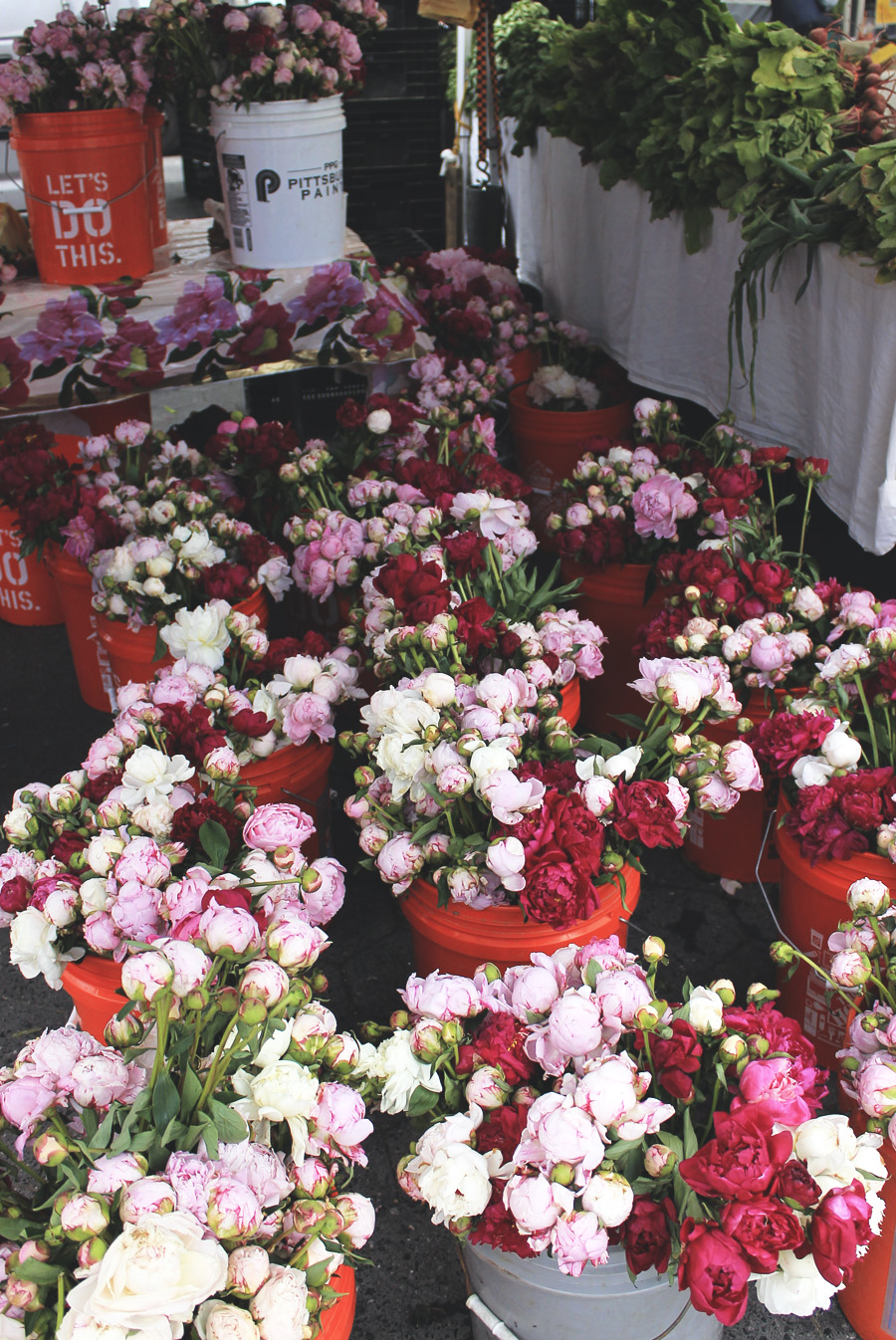 flowers peonies red white pink new york city market