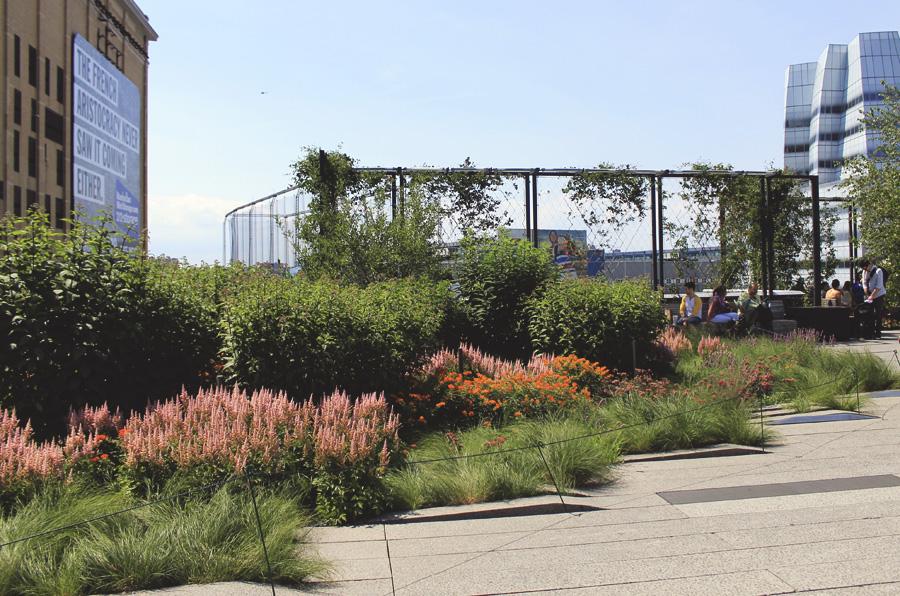 highline garden flowers new york city