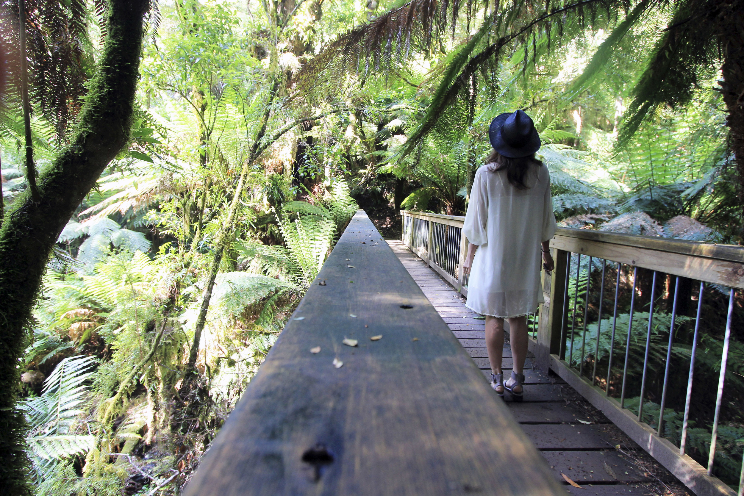 bridge-outfit-style-great-otway-national-park-ferns.jpg