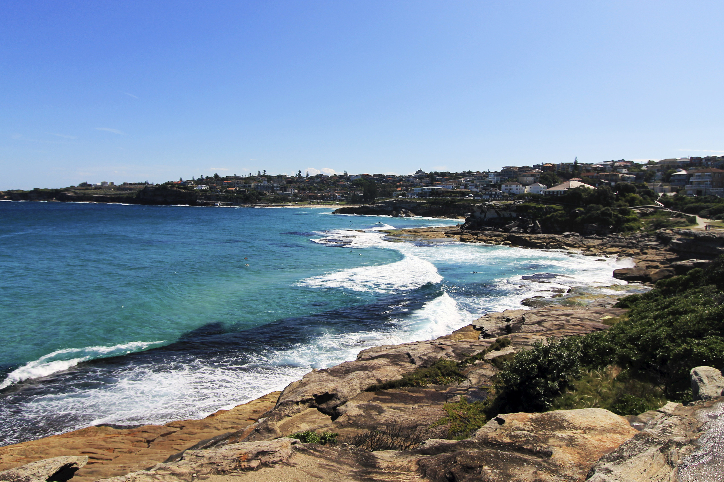 tamarama beach bondi to coogee view ocean surf.jpg