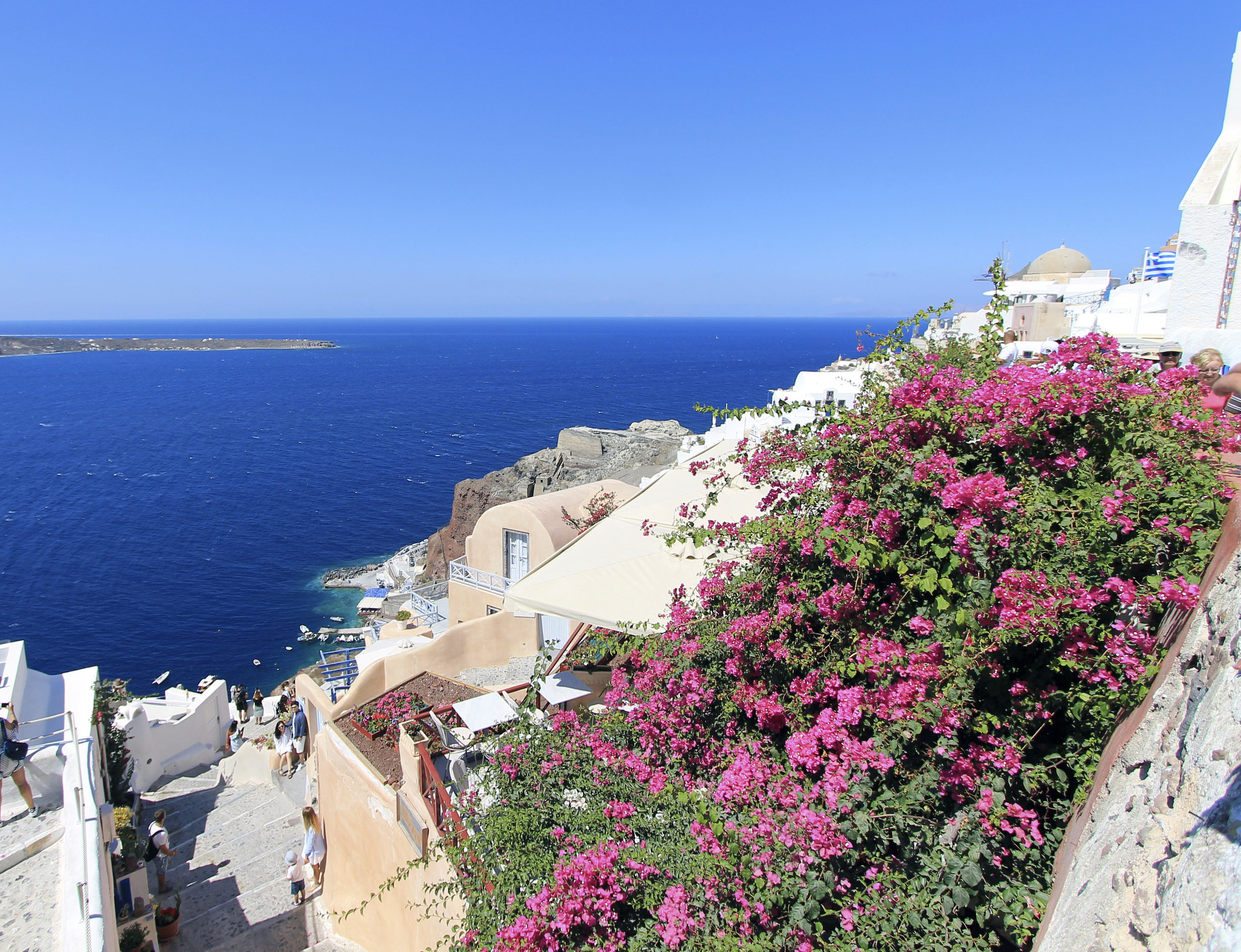 beautiful blues pinks santorini oia bougainvillea flowers.jpg