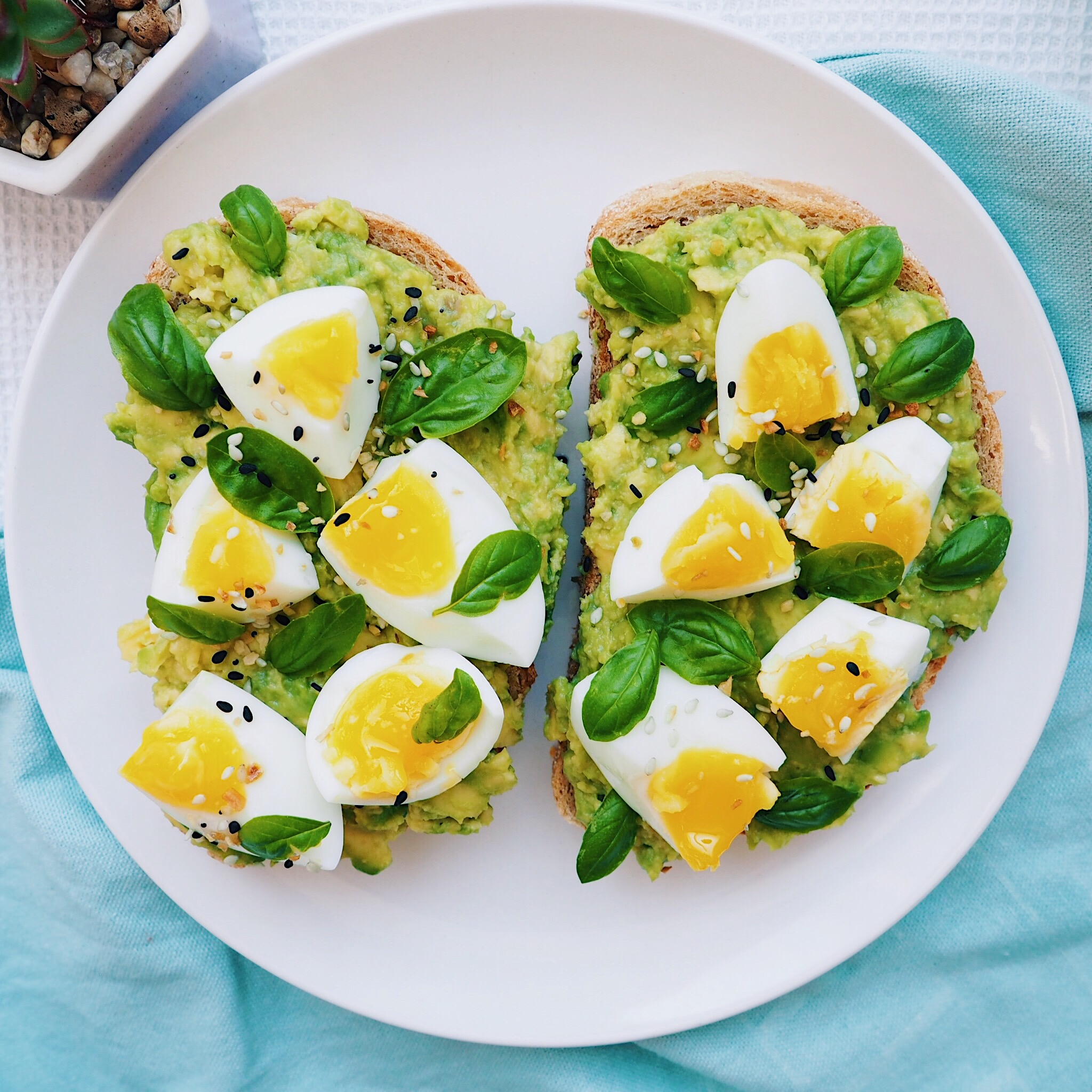 Soft Egg Avocado Toast
