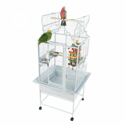 Bird Cage with Perches on Top | Bird Supplies Mineola