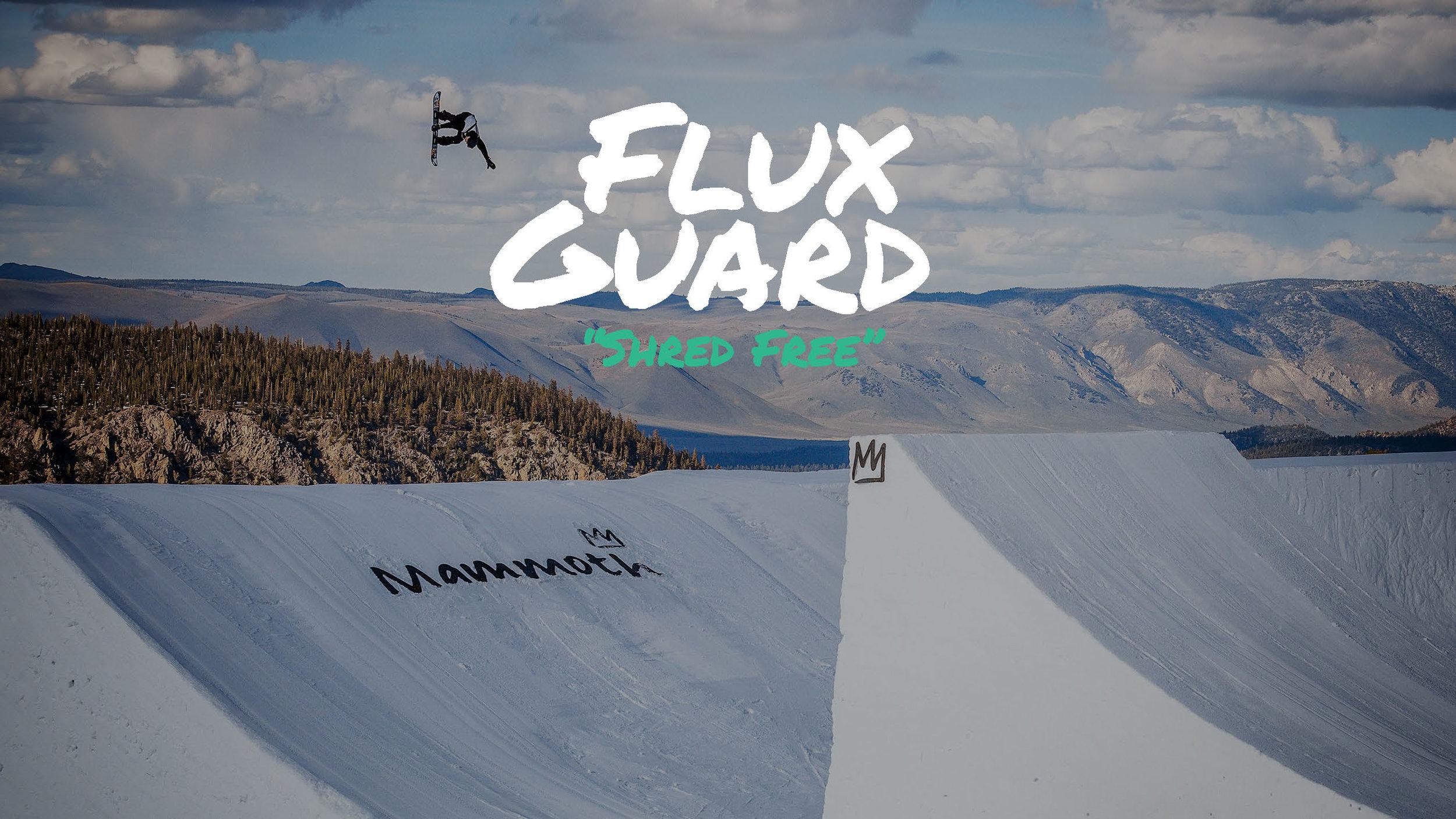 FluxGuard_Thesis_Defensev2.jpg