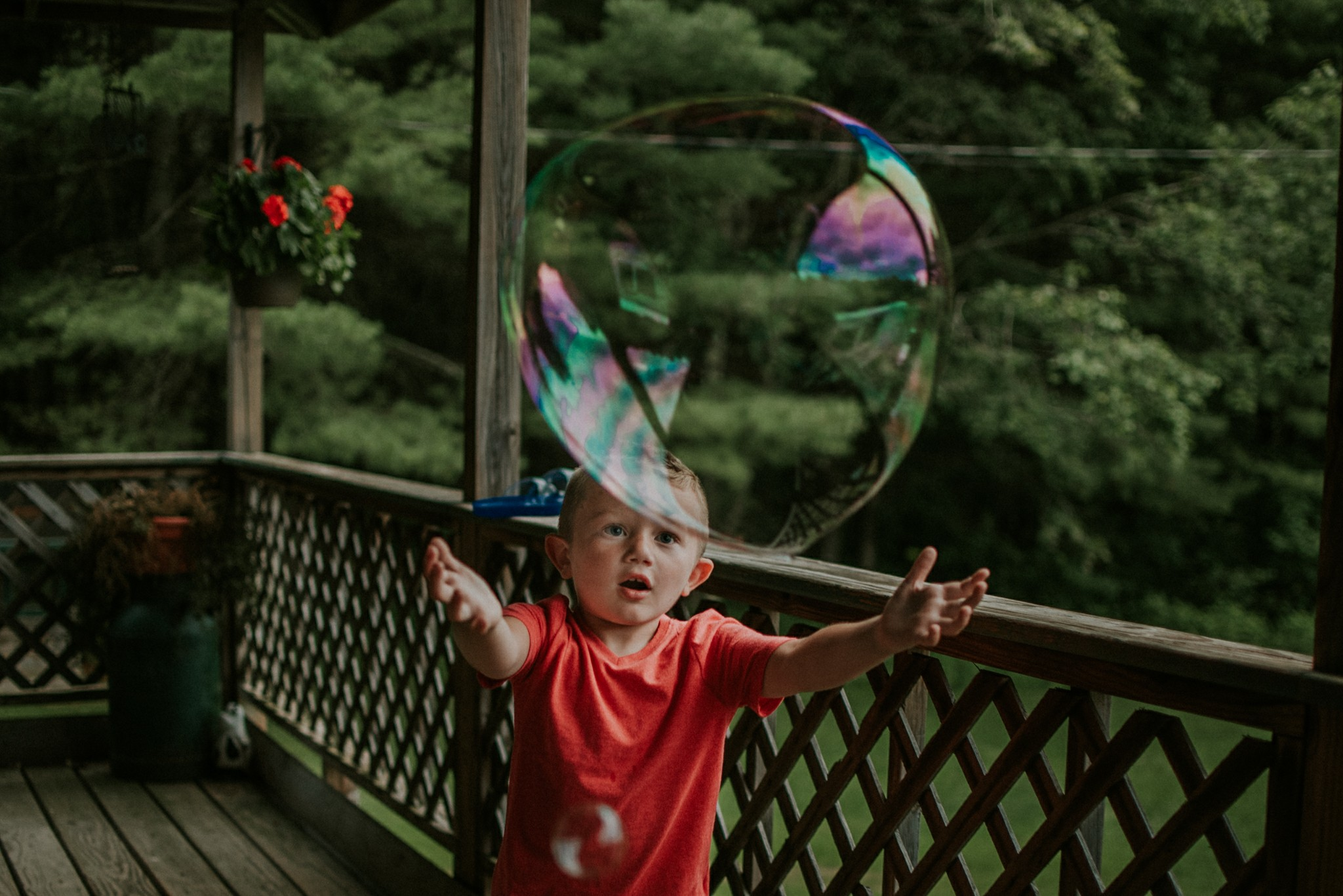 Under a Big Bubble  Featured Photographer - Brianna Waltman