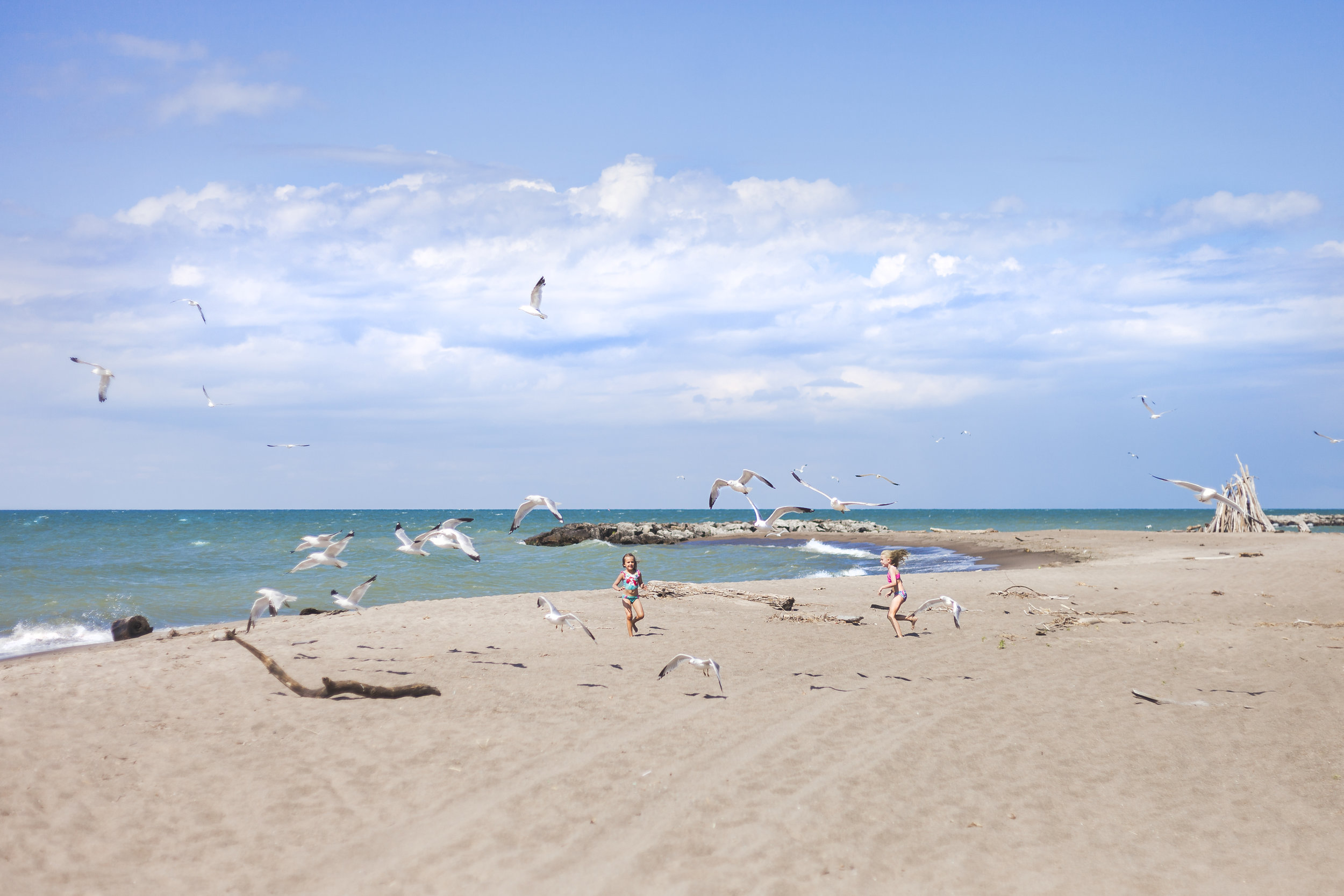 girls on beach with gulls.jpg