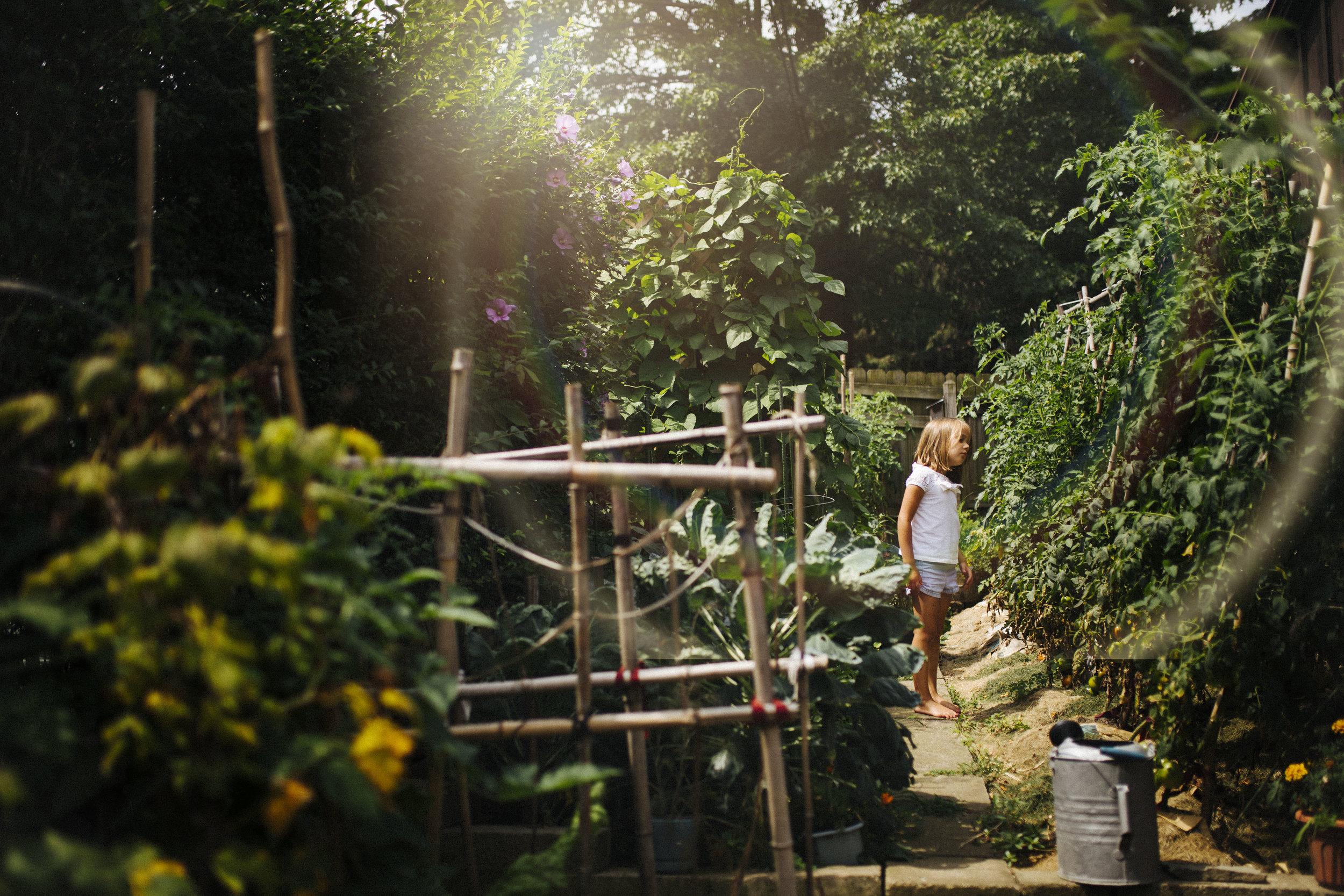 garden light.jpg
