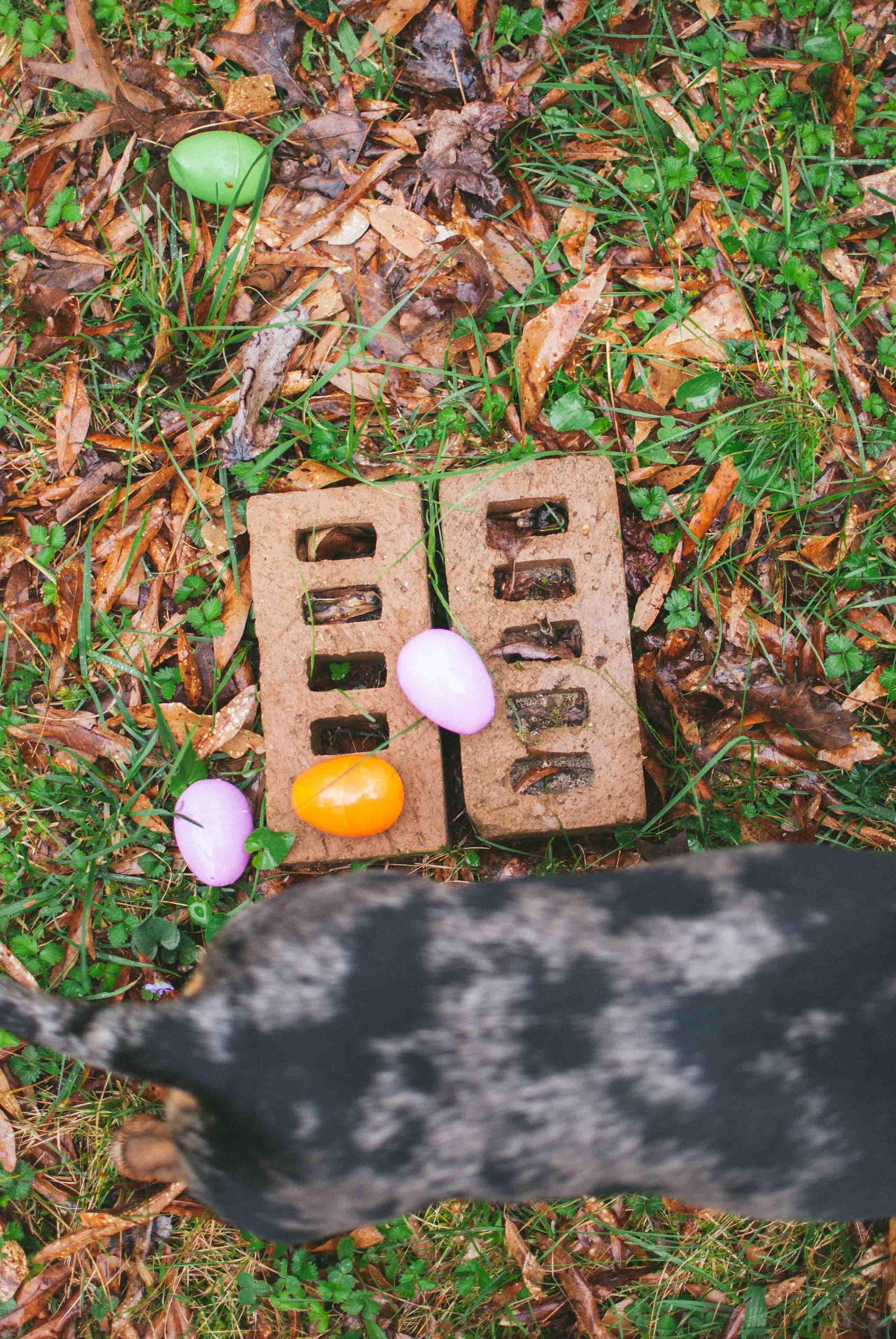 2016.03 Easter-9.jpg