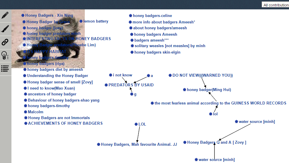 Fig. 3. KF view 'Honey badgers'