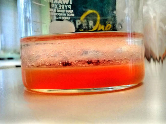 Fig. 1. Result of the strawberry DNA experiment.
