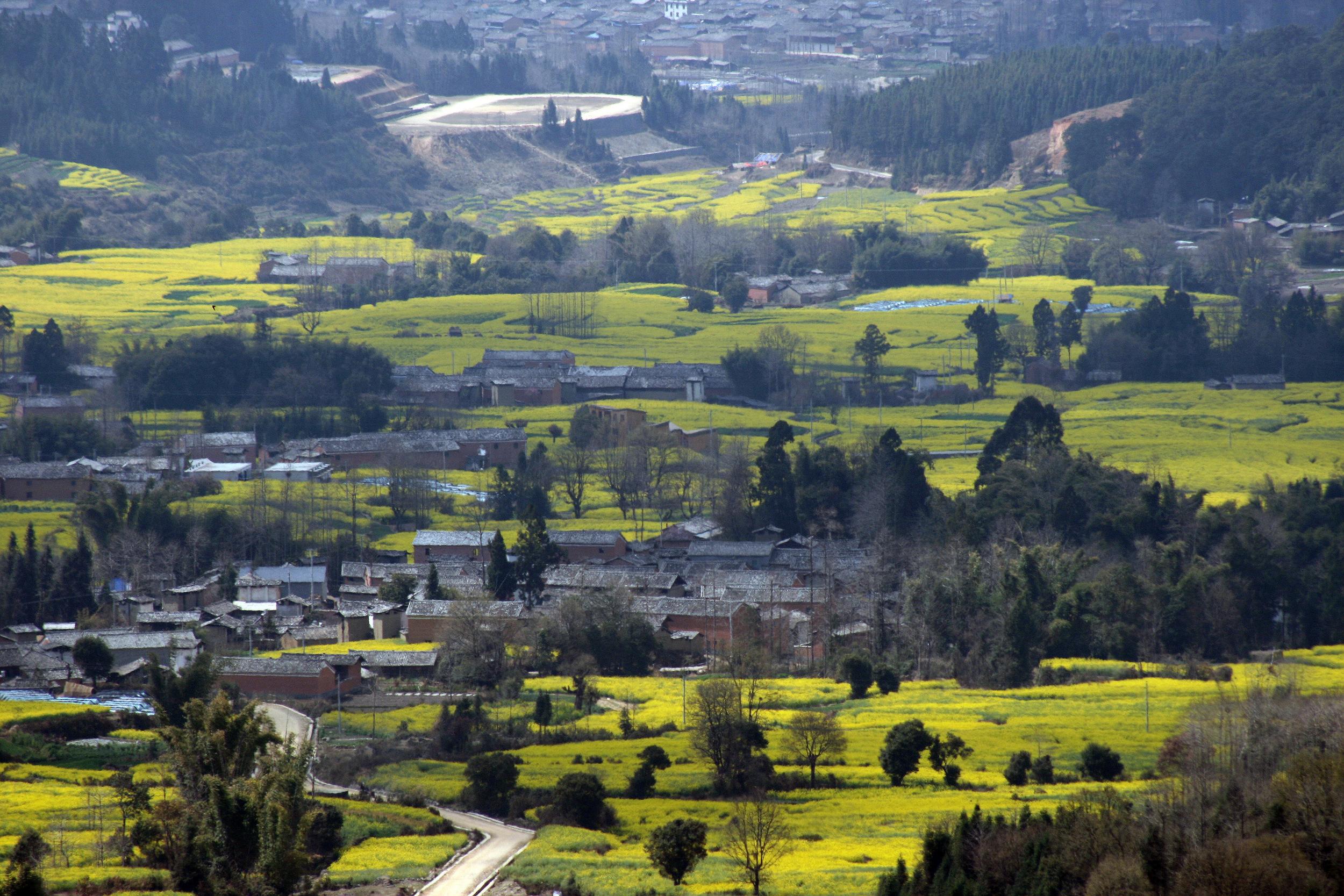 從高黎貢山上看博物館 View from mountain