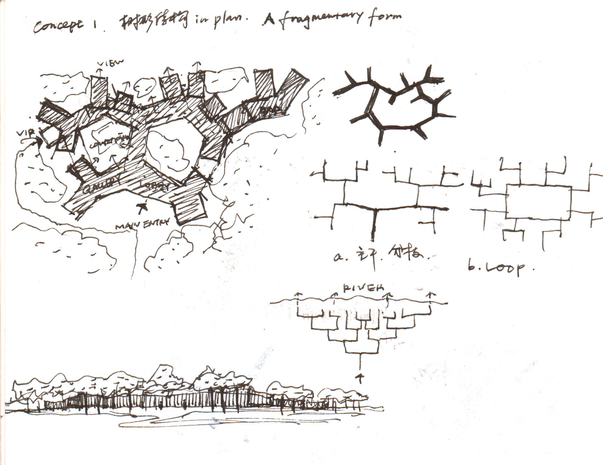 林建筑场地上,华黎对树林里的分形几何思考图