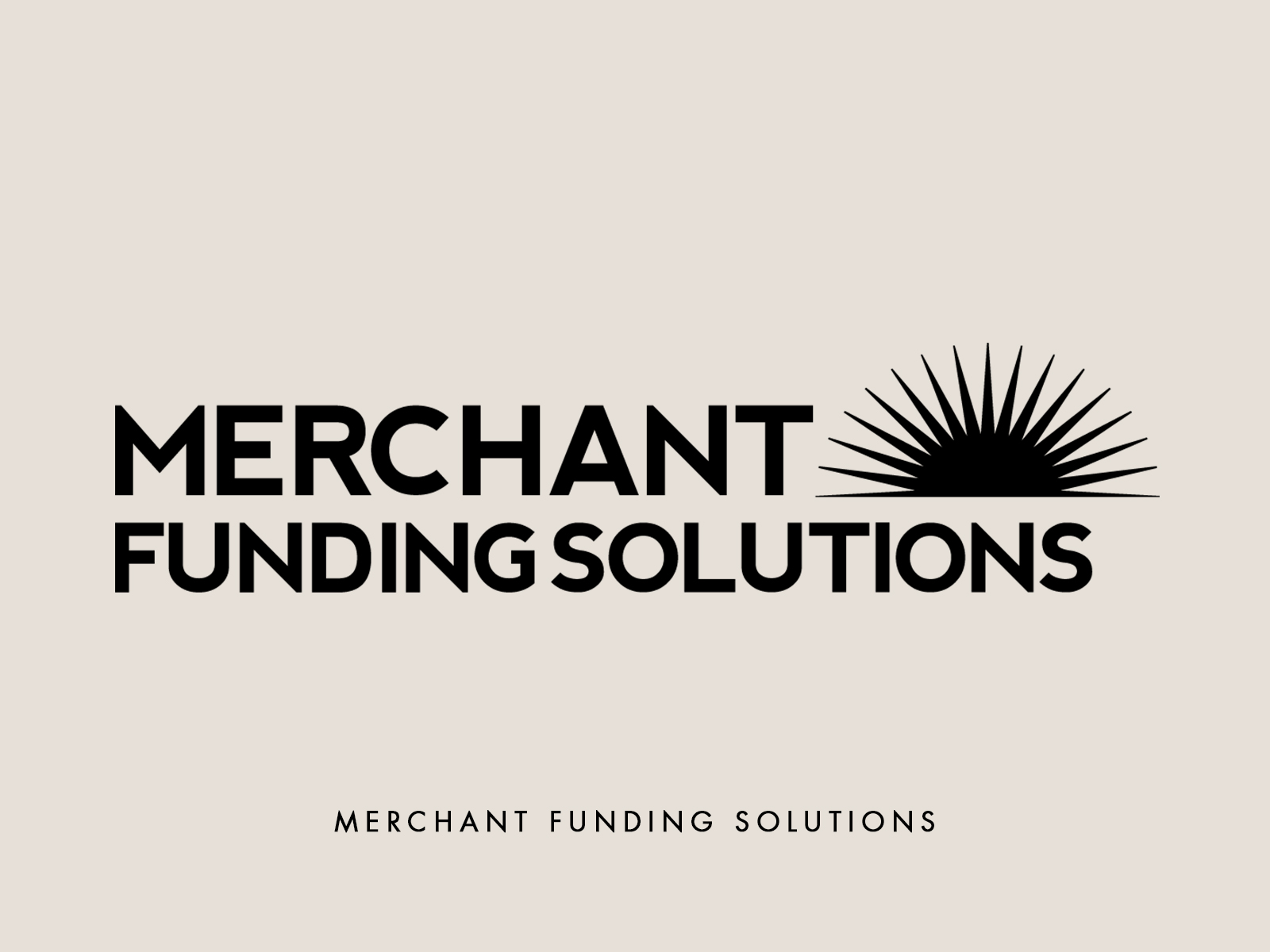 logo_MerchantFundingSolutions.jpg