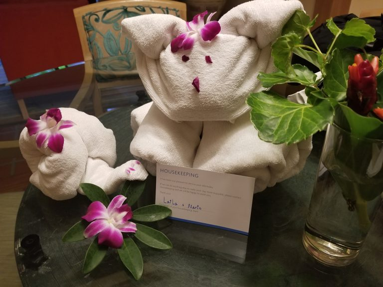 Daily, new animals were made with our towels with tropical flowers.