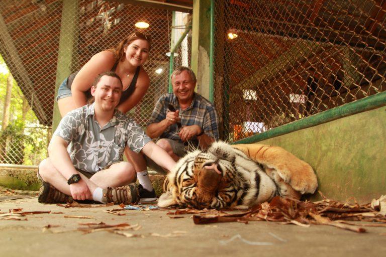 Tiger-Kingdom-Bengel-tigers-near-Phuket-Thailand-37-768x512.jpg