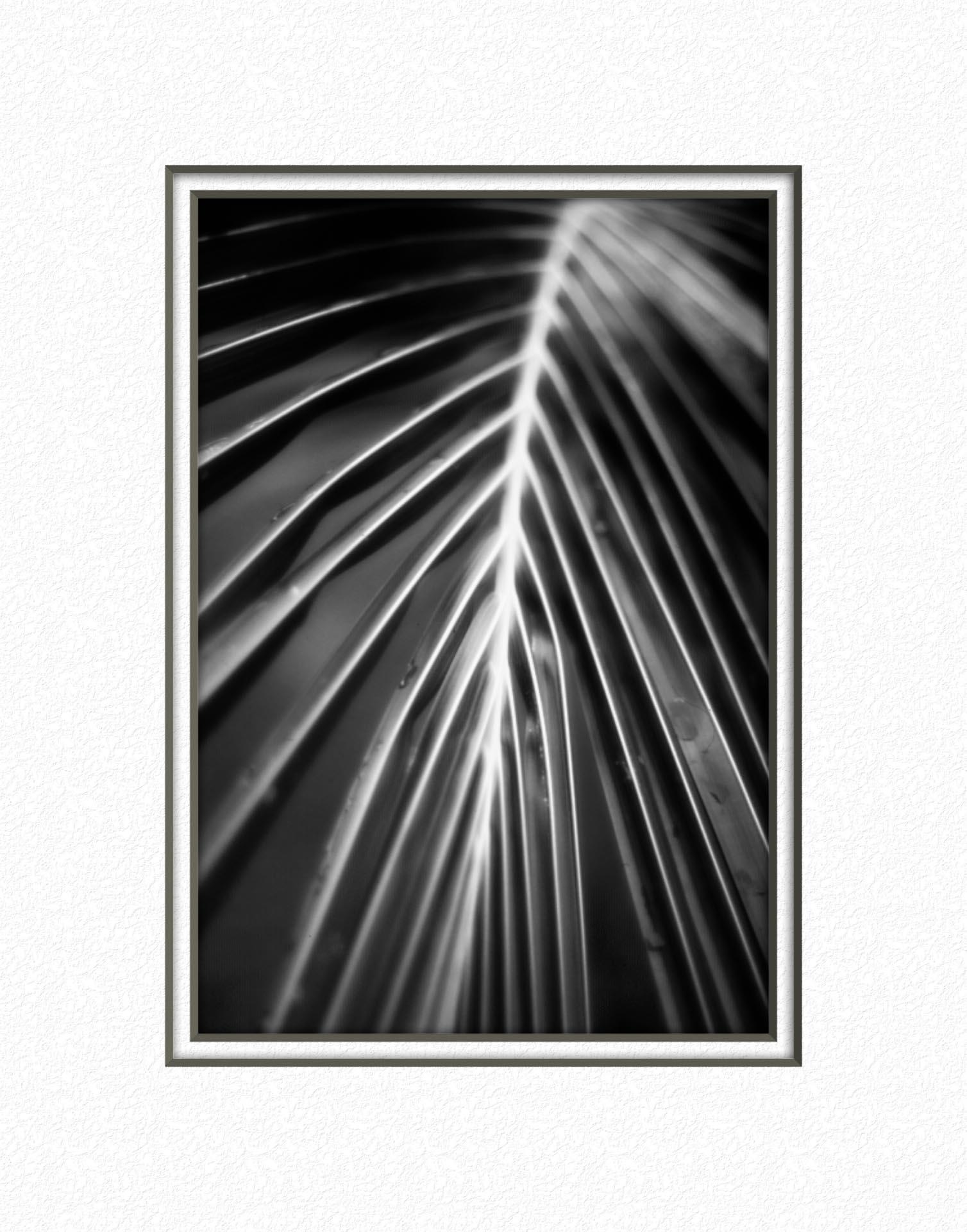 bruce berg fine art photography-20.jpg