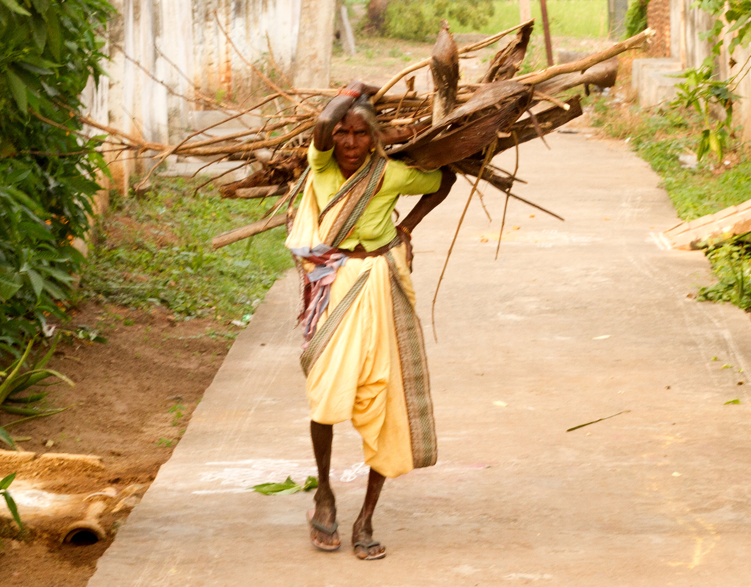 Old woman carrying wood India