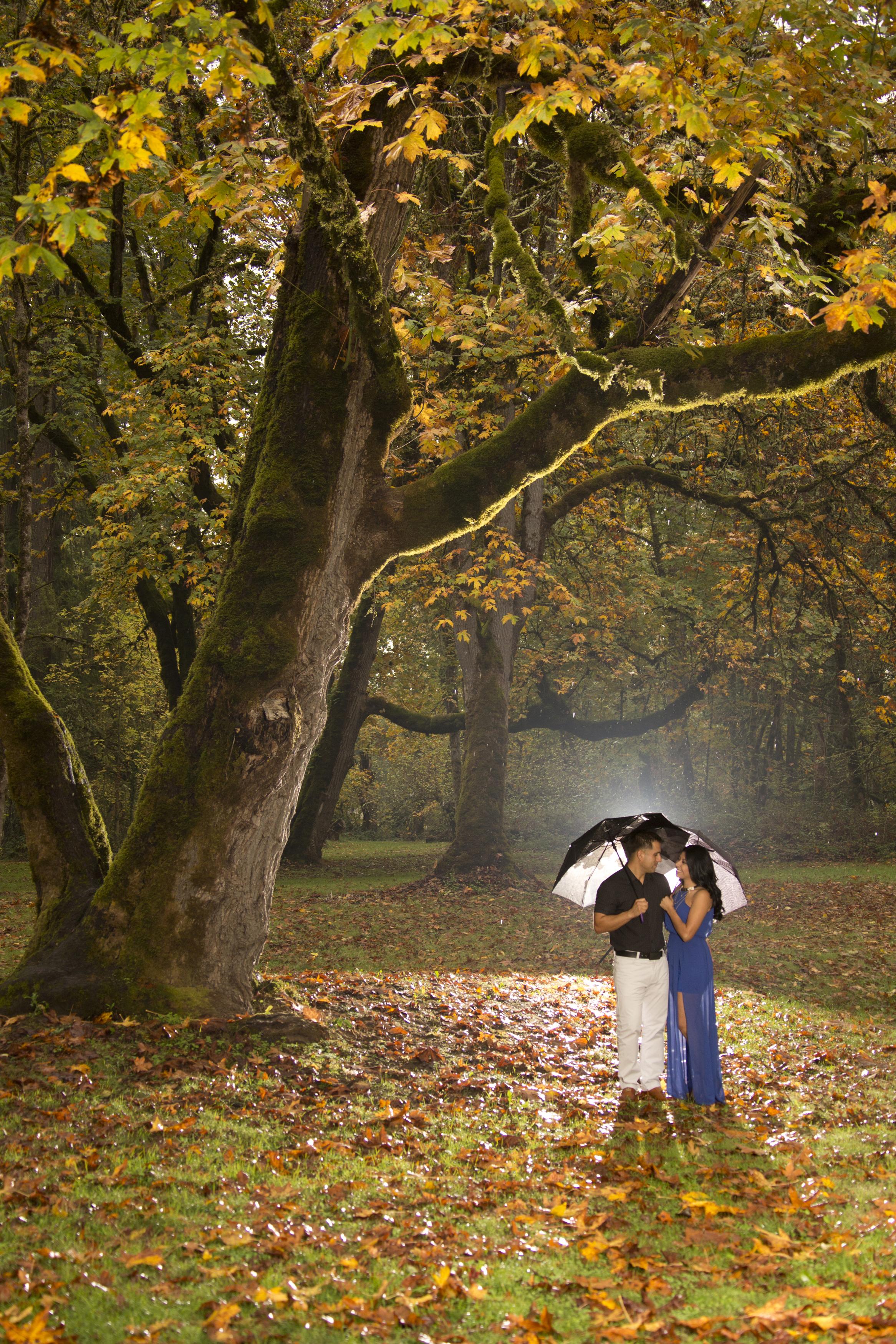 Engagement photos and proposal ideas, Eugene Oregon
