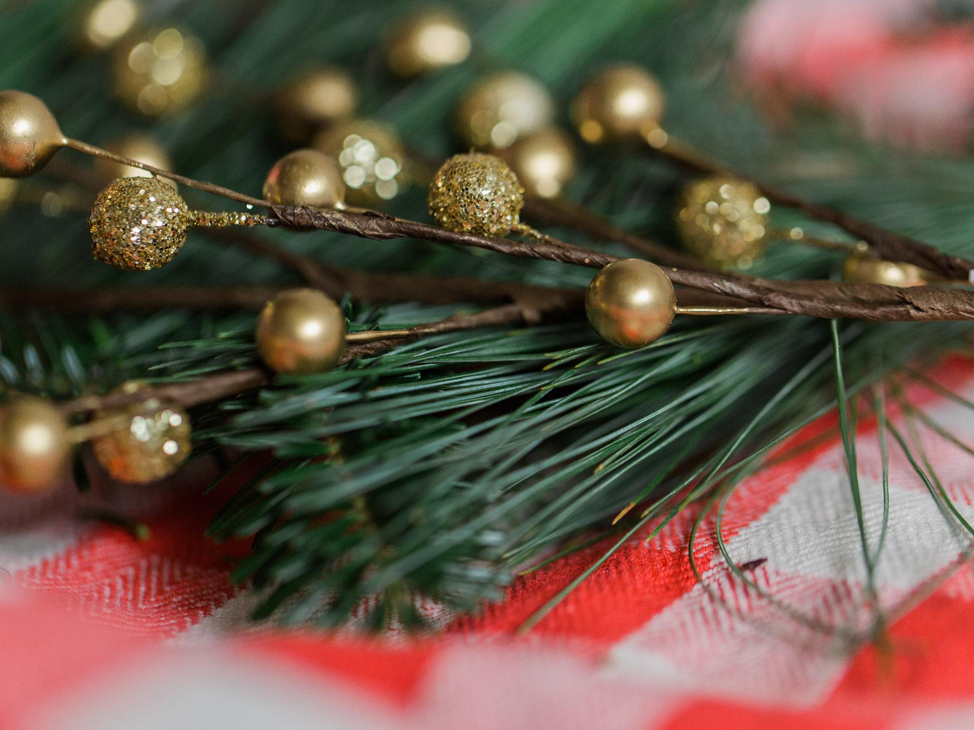 Christmas by Cleveland Wedding Photographer Matt Erickson Photography