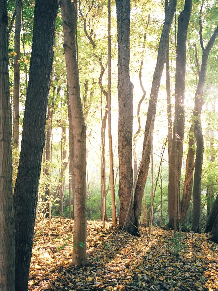 cleveland-fall-engagement-photos-by-matt-erickson-photography-27.jpg