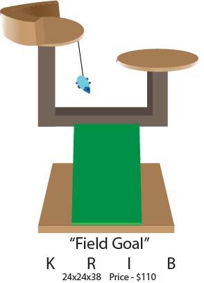 Field Goal.jpg