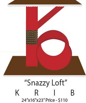 snazzy loft.jpg