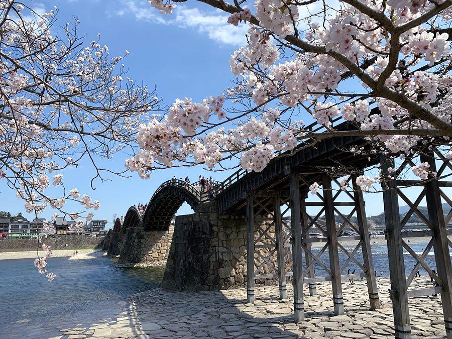 Kintai kyo Iwakuni Yamaguchi prefecture - courtesy & copyright © @spiguchiiii