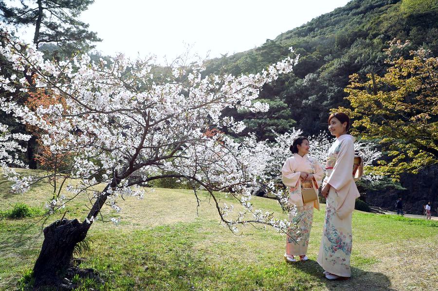 Ritsurin-kōen, Takamatsu - courtesy & copyright © @saitouyuki0217