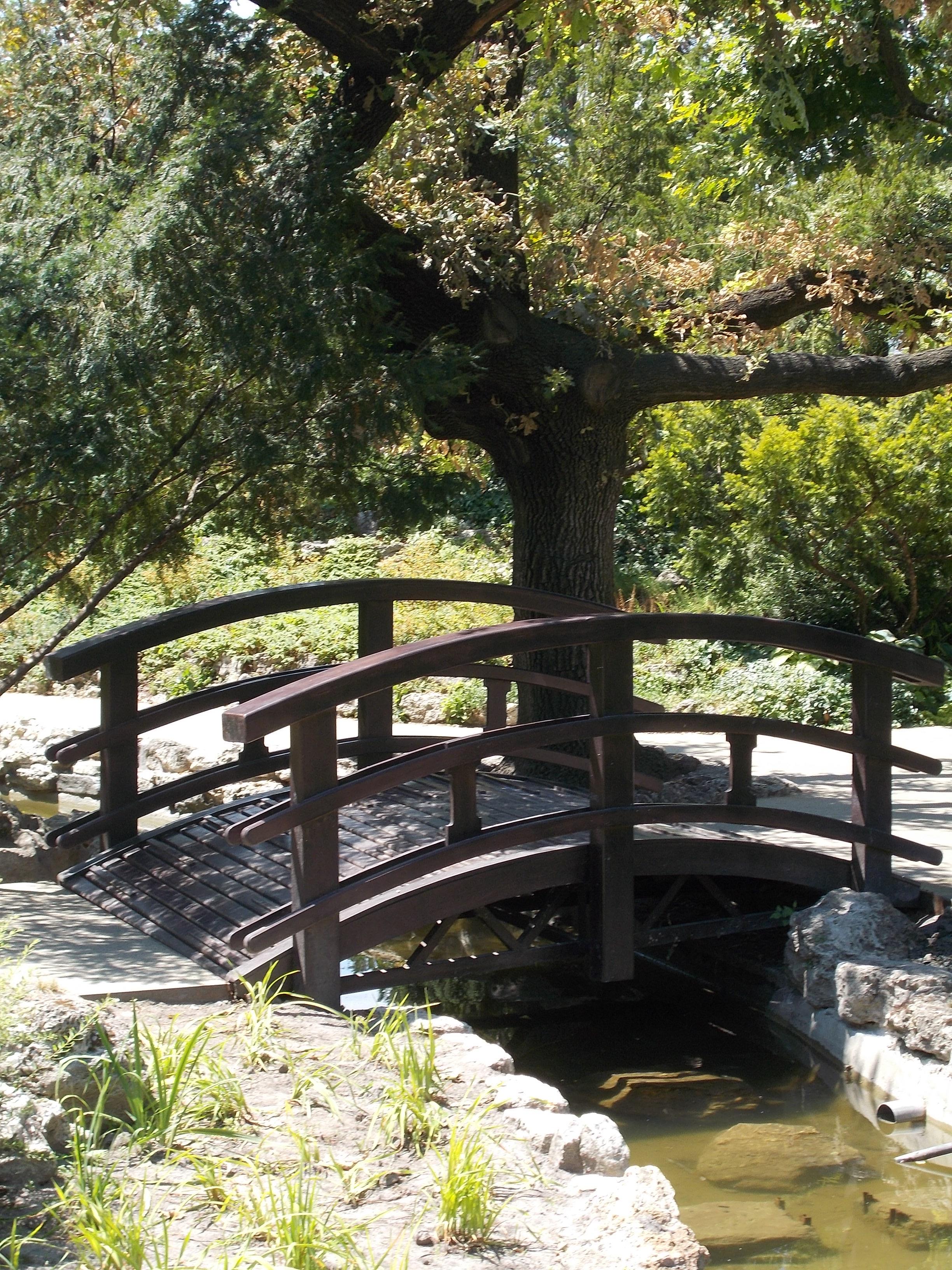 Japanese Garden on Margit Island via Wikipedia